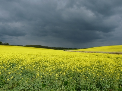 rain-clouds_60415.jpg